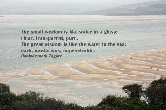 Tagore wisdom